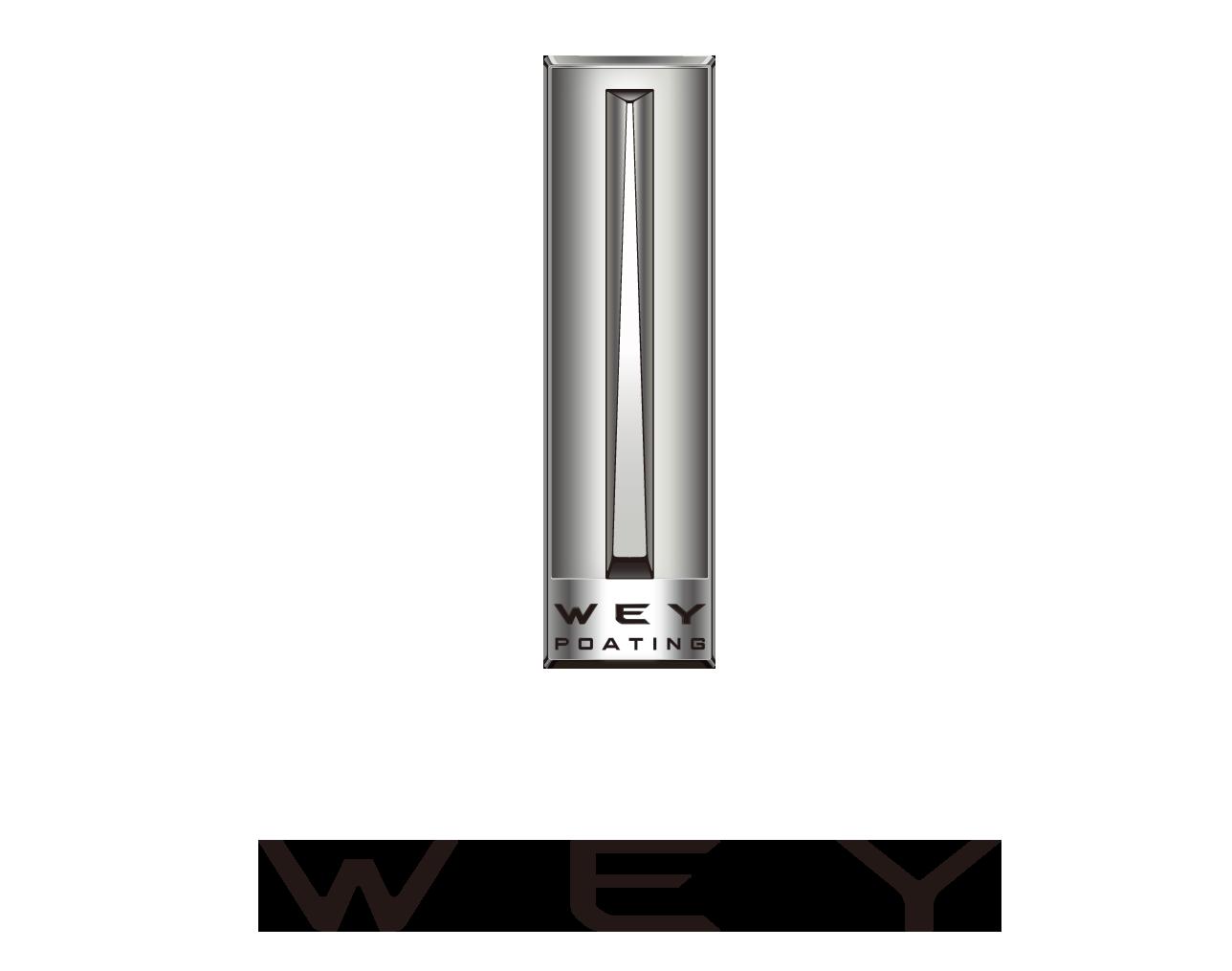 3.国家品牌计划 WEY-1.png